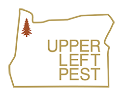 Upper Left Pest